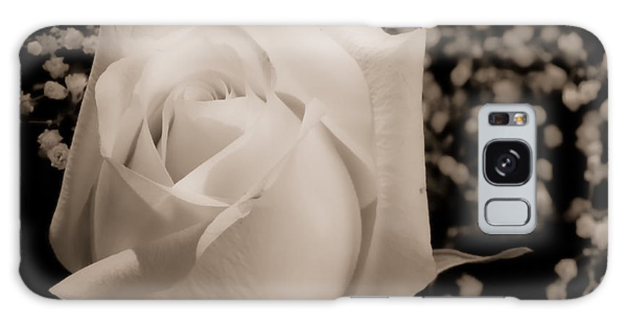 Flowers Galaxy S8 Case featuring the photograph White Rose Bw Fine Art Photography Print by James BO Insogna