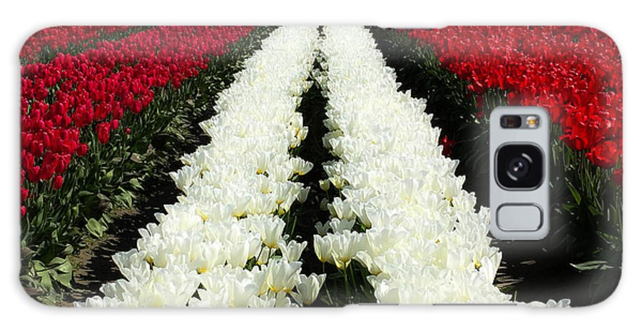 White Tulips Galaxy S8 Case featuring the digital art White Tulip Rows by Mia DeBolt