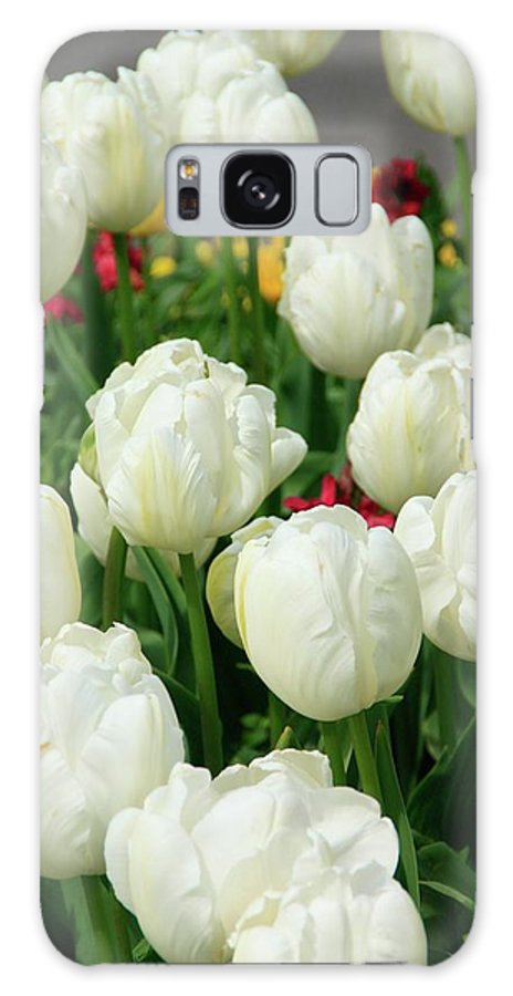 White Tulips Galaxy S8 Case featuring the photograph White Tulips by Martina Fagan