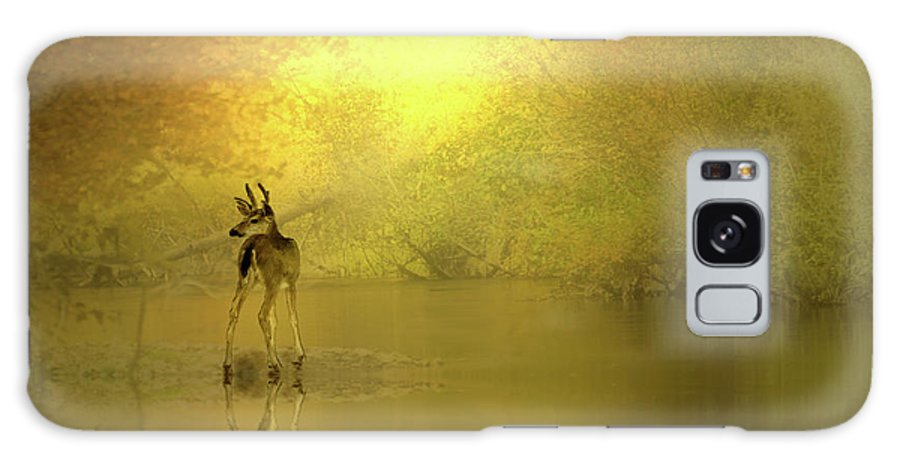 Buck Galaxy S8 Case featuring the photograph A Silent Autumn Morning by Diane Schuster