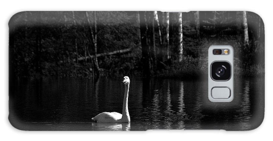 Lehtokukka Galaxy S8 Case featuring the photograph Whooper Swan In Bw 1 by Jouko Lehto