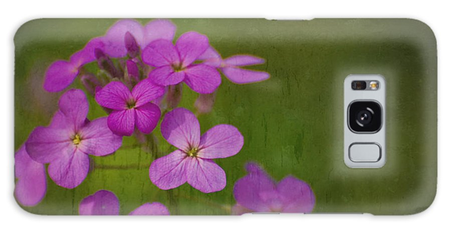 Flowers Galaxy S8 Case featuring the photograph Wild And Wonderful by Tony Bazidlo