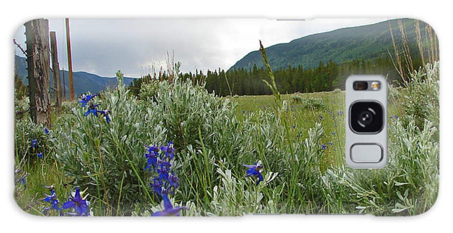 Wild Flowers Galaxy S8 Case featuring the photograph Wild Delphinium by Heather Coen