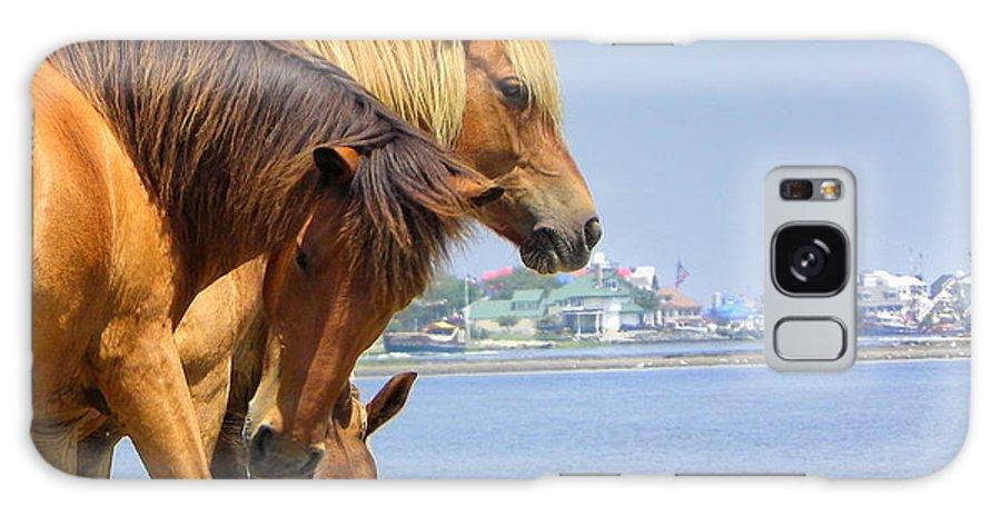 Assateaque Galaxy S8 Case featuring the photograph Wild Horses Of Assateaque by Scott Rhoads