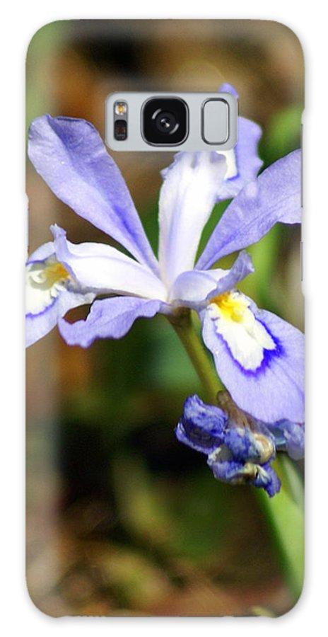 Wild Iris Galaxy S8 Case featuring the photograph Wild Iris by Marty Koch