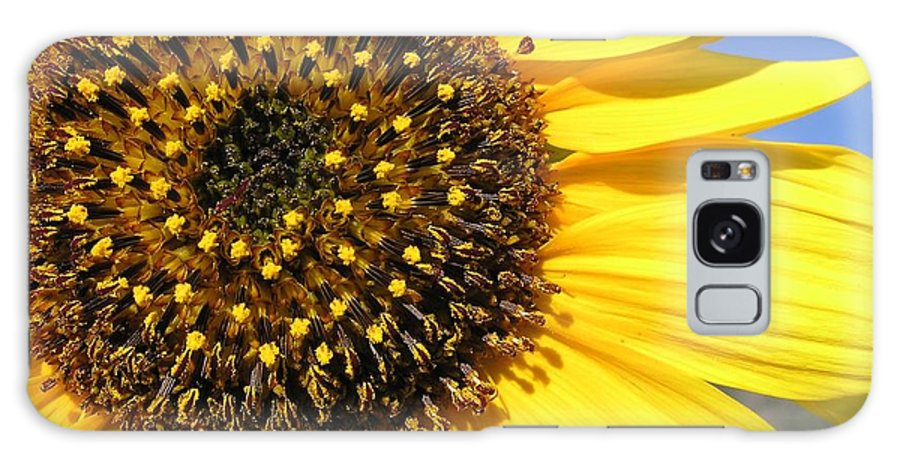 Flower Galaxy S8 Case featuring the photograph Wild Sunflower by John Myers