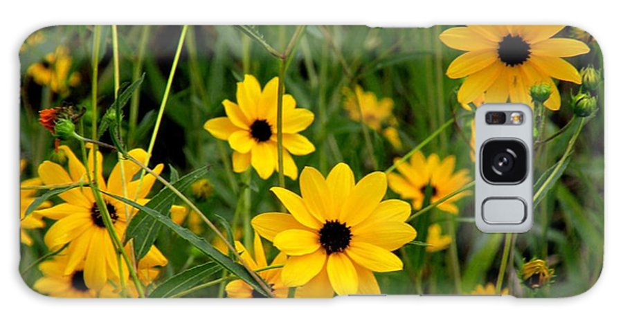 Flowers Galaxy S8 Case featuring the photograph Wild Sunflowers by Rosalie Scanlon
