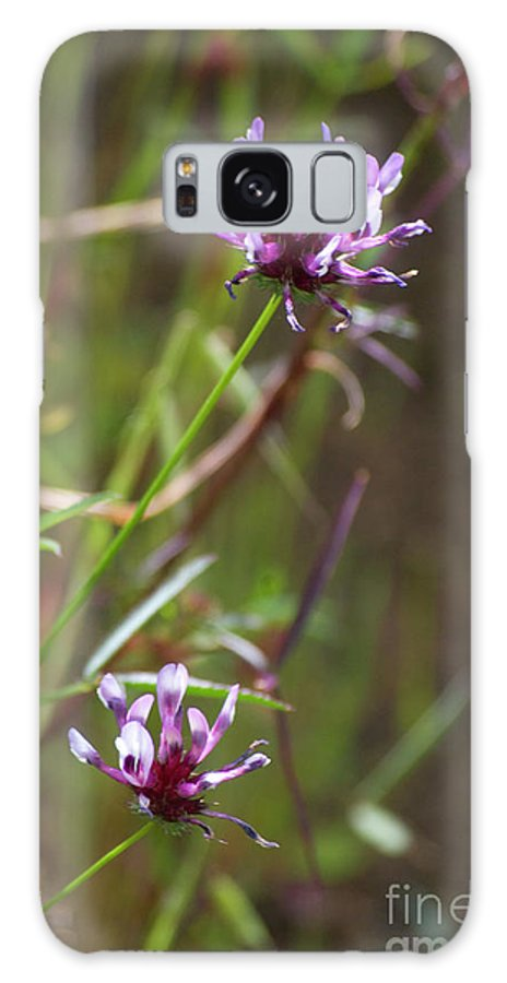 Pink Galaxy S8 Case featuring the photograph Wildflowers by Jim And Emily Bush