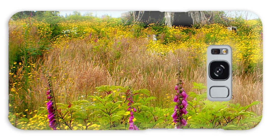 Stump Galaxy Case featuring the photograph Wildflowers by Idaho Scenic Images Linda Lantzy