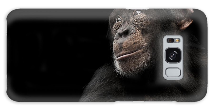 Chimpanzee Galaxy S8 Case featuring the photograph Window To The Soul by Paul Neville