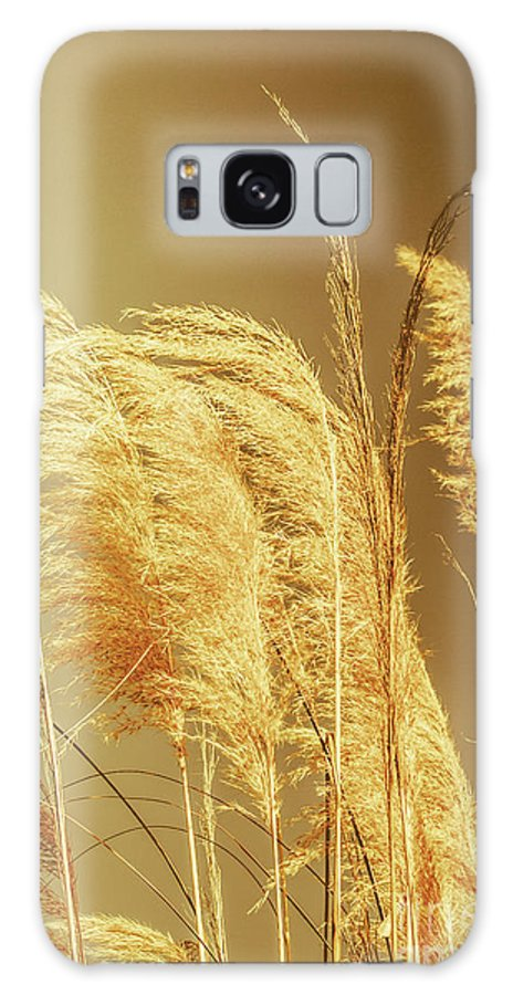 Dry Galaxy S8 Case featuring the photograph Windswept Autumn Brush Grass by Jorgo Photography - Wall Art Gallery