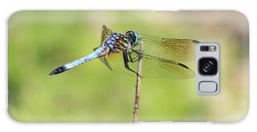 Dragonfly Galaxy S8 Case featuring the photograph Windswept Dragonfly by Carol Groenen