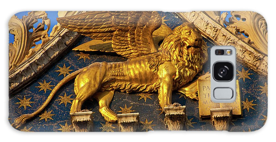 Winged Lion Galaxy S8 Case featuring the photograph Winged Lion by Harry Spitz