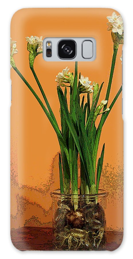 Narcissus Galaxy S8 Case featuring the photograph Winter Beauty II by Suzanne Gaff