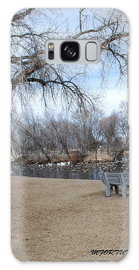 Trees Galaxy Case featuring the photograph Winter Duck Pond by Margaret Fortunato