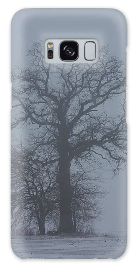 Tree Galaxy Case featuring the photograph Winter Fog by Carl Purcell
