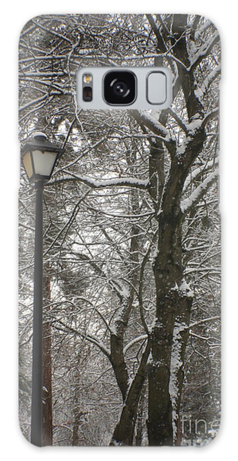 Lamp Galaxy S8 Case featuring the photograph Winter Lamp Post by Idaho Scenic Images Linda Lantzy
