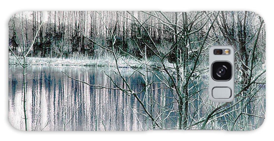 Landscape.winter Galaxy S8 Case featuring the photograph Winter by Linda Sannuti