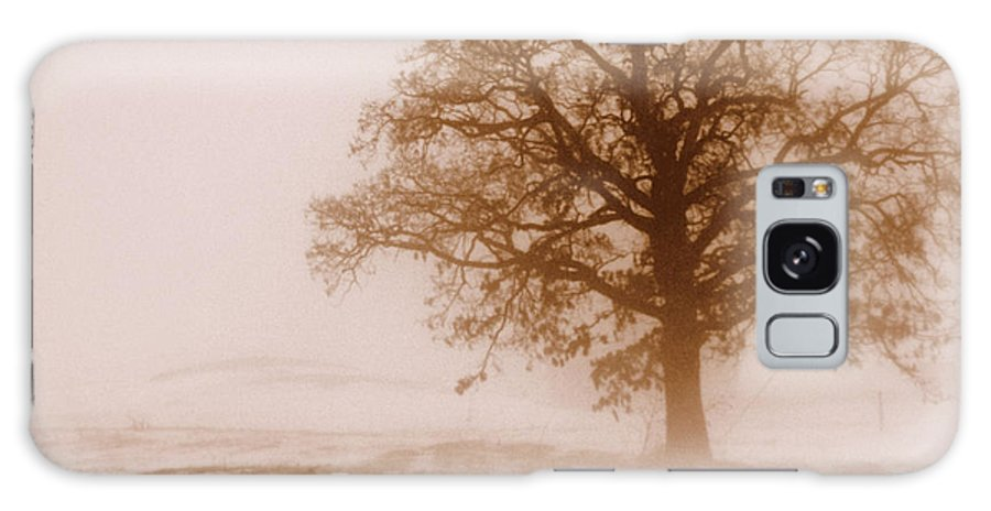 Fog Galaxy S8 Case featuring the photograph Winter Mist by Linda Mishler