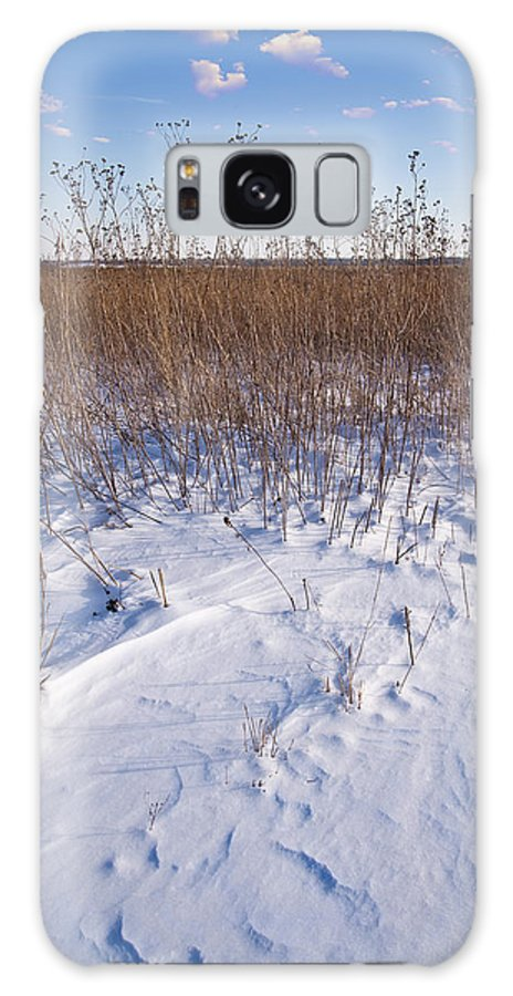 Goose Galaxy S8 Case featuring the photograph Winter On The Prairie by Steve Gadomski