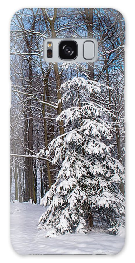 Winter Galaxy S8 Case featuring the photograph Winter Perfection by Jenny Rainbow