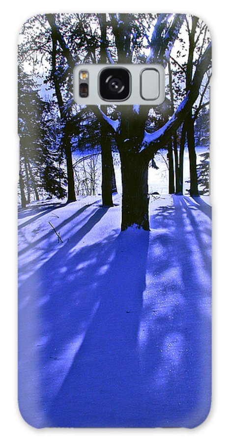 Landscape Galaxy S8 Case featuring the photograph Winter Shadows by Tom Reynen
