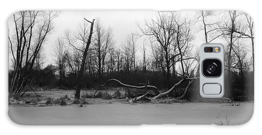Swamp Galaxy Case featuring the photograph Winter Swamp by Michelle Miron-Rebbe