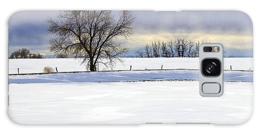 Photograph Galaxy S8 Case featuring the photograph Winter Tree by Munir Alawi