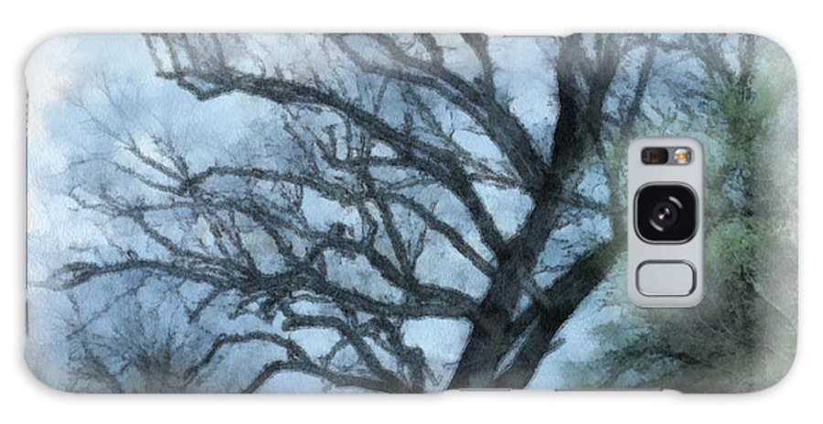 Texas Galaxy S8 Case featuring the photograph Winter Tree by Paulette B Wright