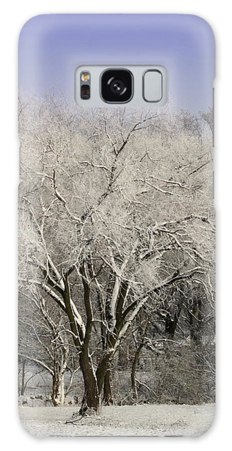Landscape Galaxy S8 Case featuring the photograph Winter Trees by Diane Merkle