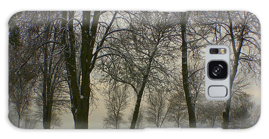 Park Galaxy S8 Case featuring the photograph Winter Wonderland by Idaho Scenic Images Linda Lantzy