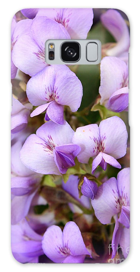 Purple Galaxy S8 Case featuring the photograph Wisteria Blossoms by Carol Groenen