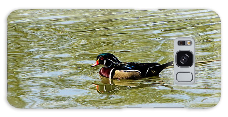 Wood Duck Galaxy S8 Case featuring the photograph Wood Duck by September Stone