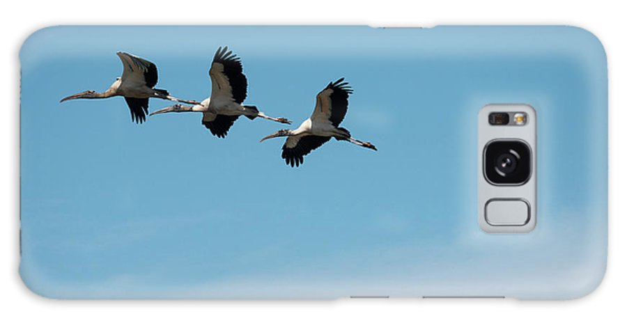 Wood Stork Galaxy S8 Case featuring the photograph Wood Storks In Flight by David Ramage