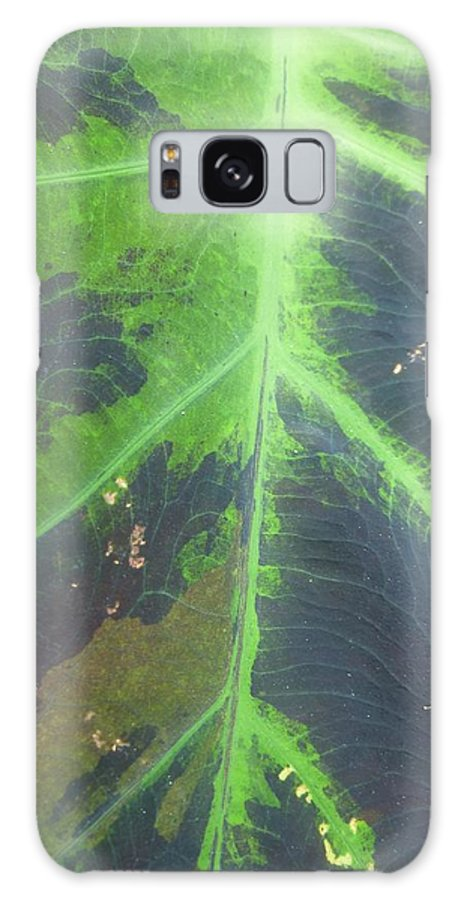 Abstract Galaxy S8 Case featuring the photograph World Up Close by Florene Welebny
