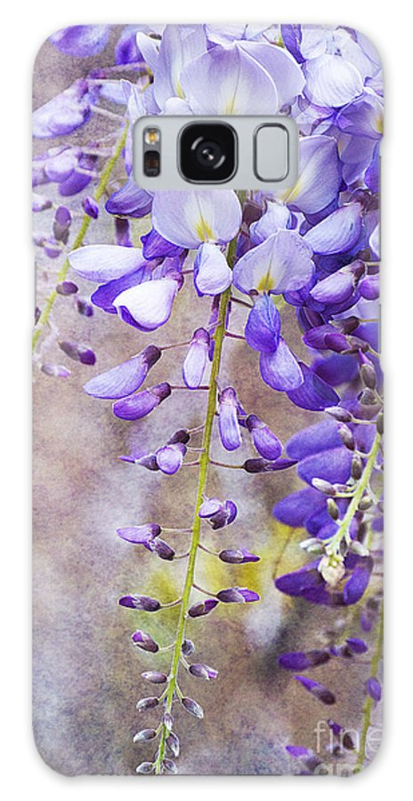 Wysteria Galaxy S8 Case featuring the photograph Wysteria by Jim And Emily Bush
