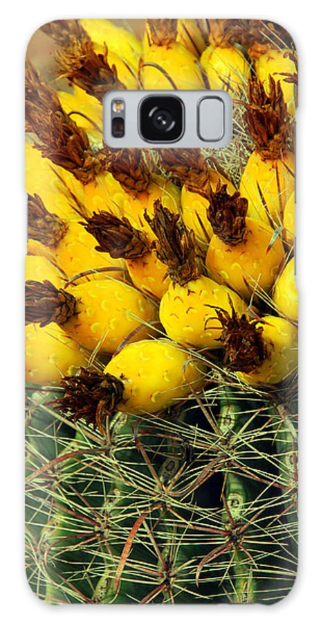 Cactus Galaxy S8 Case featuring the photograph Yellow Cactus by Susanne Van Hulst