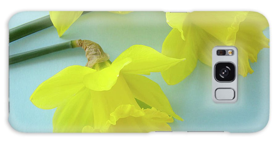 �daffodils Artwork� Galaxy S8 Case featuring the photograph Yellow Daffodils Artwork Spring Flowers Art Prints Nature Floral Art by Baslee Troutman