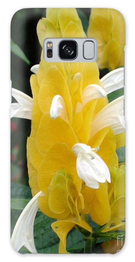 Flower Galaxy Case featuring the photograph Yellow Eruption by Shelley Jones