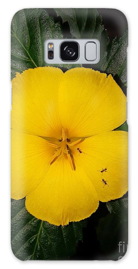 Yellow Galaxy S8 Case featuring the photograph Yellow Flower 2 by Tiffany Stalker