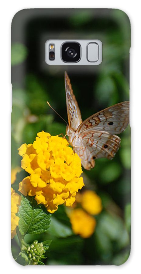 Butterfly Galaxy S8 Case featuring the photograph Yellow Flower Brown Fly by Rob Hans