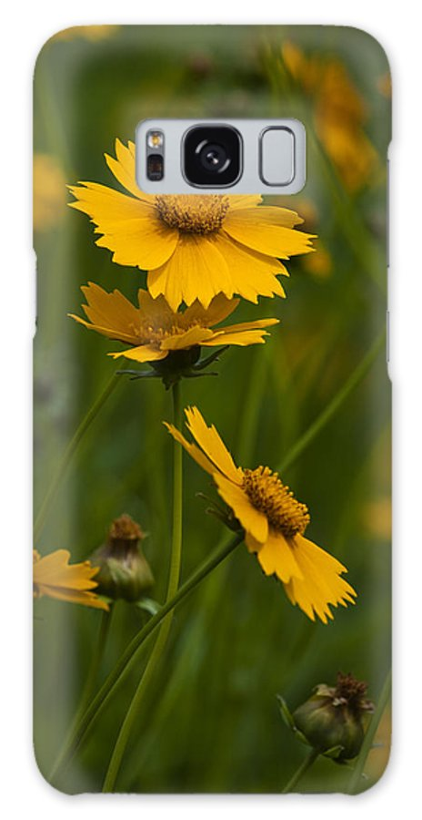 Flower Galaxy S8 Case featuring the photograph Yellow Flower by Chad Davis