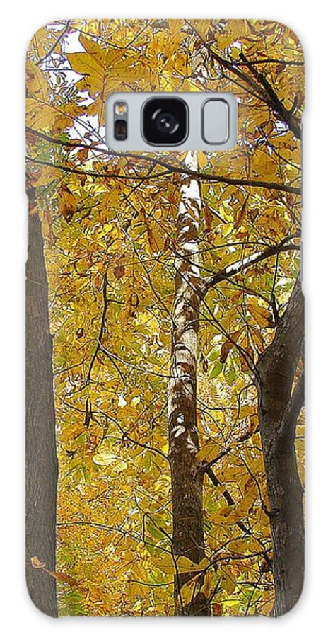 Galaxy S8 Case featuring the photograph Yellow Magic by Luciana Seymour