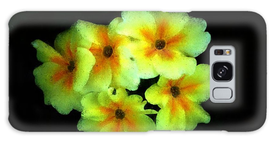 Digital Photo Galaxy S8 Case featuring the photograph Yellow Primrose 5-25-09 by David Lane