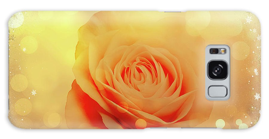 Rose Galaxy S8 Case featuring the photograph Yellow Rose And Joy by Johanna Hurmerinta