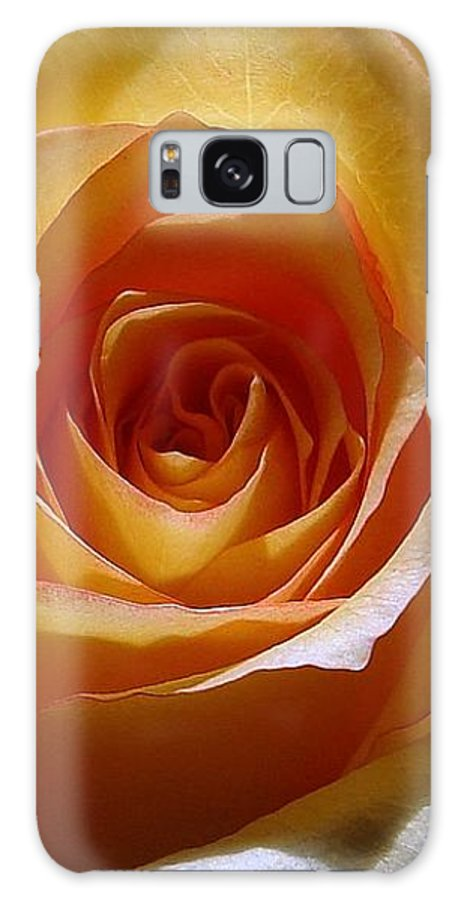 Rose Yellow Galaxy S8 Case featuring the photograph Yellow Rose by Luciana Seymour