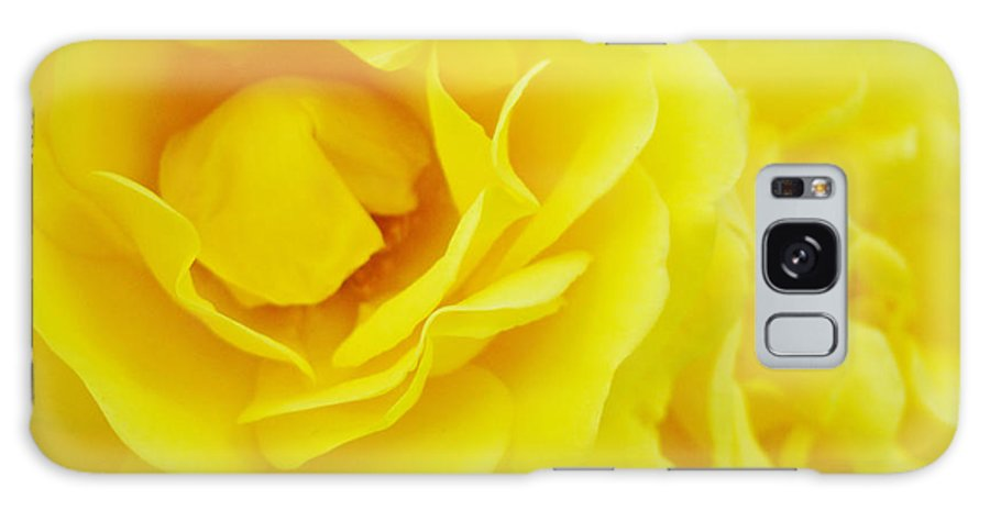 Rose Galaxy S8 Case featuring the photograph Yellow Roses Art Prints Botanical Giclee Prints Baslee Troutman by Baslee Troutman