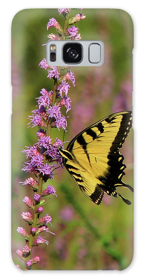 Nature Galaxy S8 Case featuring the photograph Yellow Tiger by Peg Urban