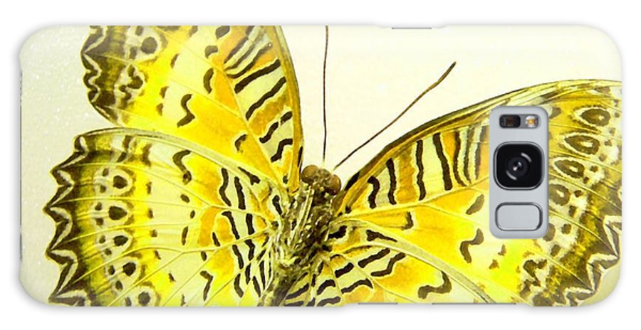Butterfly Galaxy S8 Case featuring the photograph Yellow Wings In Gold by Rosalie Scanlon