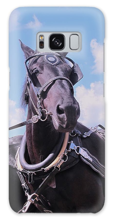 Percheron Galaxy S8 Case featuring the photograph Yes I Am The Most Beautiful by Ian MacDonald
